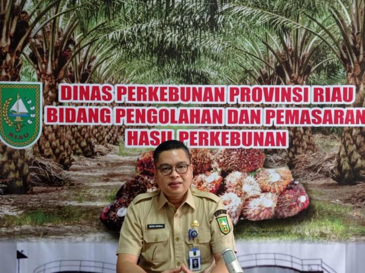 Kabid Pengolahan dan Pemasaran Dinas Perkebunan (Disbun) Riau, Defris Hatmaja